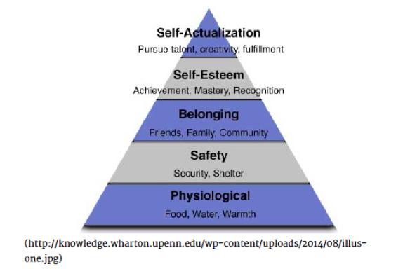 classification collaborative essay